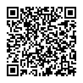 Authorization QR Code